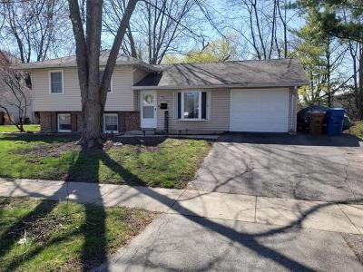 Du Page County Single Family Home New: 640 Springfield Drive