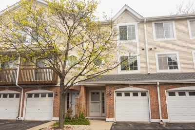 Palatine Condo/Townhouse New: 208 East Parallel Street