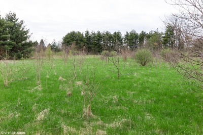 Plainfield Residential Lots & Land For Sale: 0000 Old Ridge Road