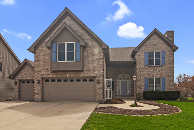 Naperville Single Family Home New: 2116 Yellowstar Lane