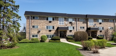 Du Page County Condo/Townhouse New: 1003 Argyle Street #6A