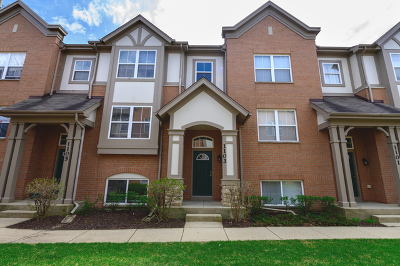 Palatine Condo/Townhouse New: 1103 North Claremont Drive