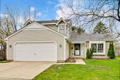 Crystal Lake Single Family Home New: 780 Covington Circle
