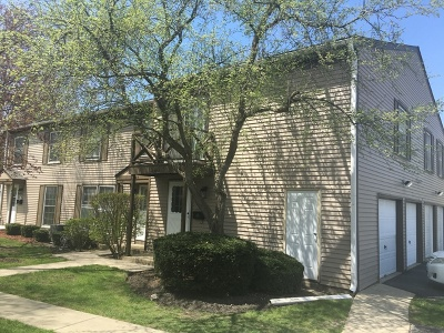 Wheaton Condo/Townhouse New: 1120 Mount Vernon Court #A