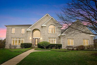 Buffalo Grove Single Family Home For Sale: 320 Foxford Drive