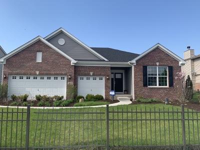 Minooka, Channahon Single Family Home For Sale: 503 Edgewater Drive