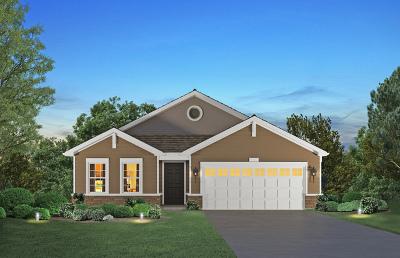 Plainfield Single Family Home For Sale: 25504 West Ryan Lane