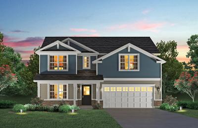 Plainfield Single Family Home For Sale: 25429 West Ryan Lane