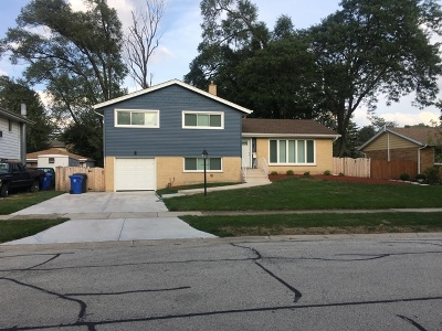Mount Prospect Single Family Home For Sale: 505 South Edward Street