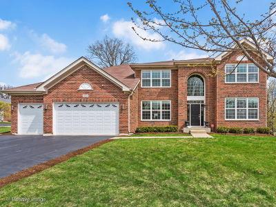 Hoffman Estates Single Family Home For Sale: 1489 Fox Path Lane