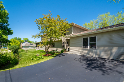 Antioch Single Family Home For Sale: 42367 North Park Lane
