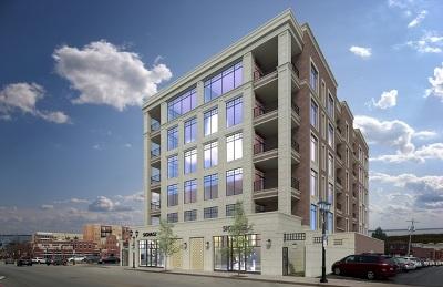Elmhurst Condo/Townhouse For Sale: 195 North Addison Avenue #502