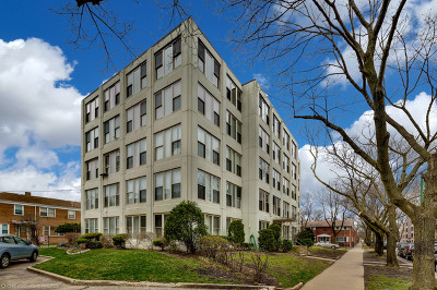 Chicago Condo/Townhouse New: 1633 West Thome Avenue #504