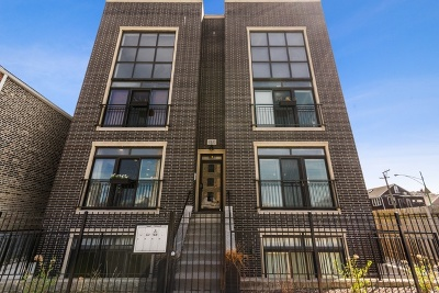 Chicago Condo/Townhouse New: 931 West 18th Place #1E