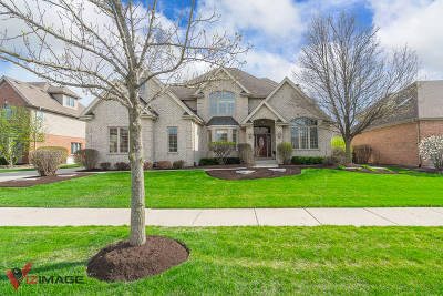 Orland Park Single Family Home For Sale: 10905 White Deer Circle