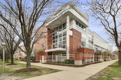 Chicago Condo/Townhouse New: 2942 North Paulina Street