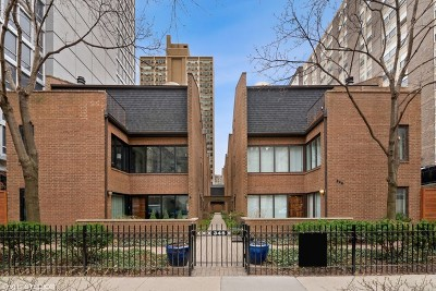 Chicago Condo/Townhouse New: 345 West Barry Avenue #1