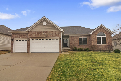 Oswego Single Family Home New: 352 Andover Drive