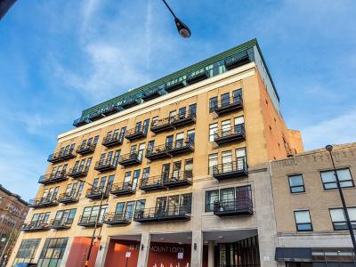 Chicago Condo/Townhouse New: 1645 West Ogden Avenue #623