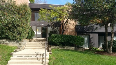 Palatine Condo/Townhouse New: 1295 North Sterling Avenue #203