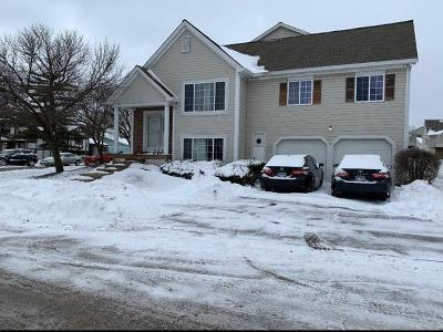 Hanover Park Condo/Townhouse For Sale: 6238 Nugget Circle #6238