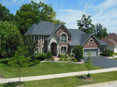 St. Charles Single Family Home For Sale: 3418 Majestic Oaks Drive