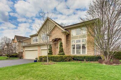 Buffalo Grove Single Family Home For Sale: 17 River Oaks Circle East