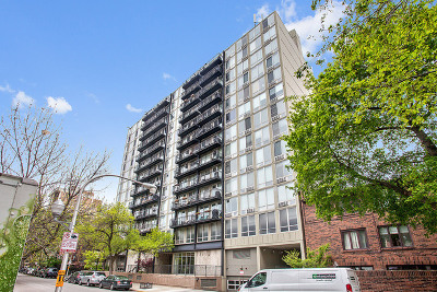 Chicago Condo/Townhouse New: 450 West Briar Place #11M