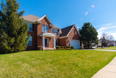 Elburn Single Family Home For Sale: 942 Citizen Avenue