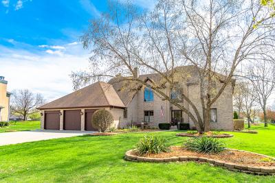 Bolingbrook Single Family Home For Sale: 8 Roanoke Court