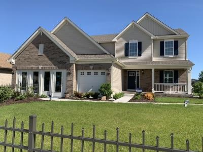Minooka, Channahon Single Family Home For Sale: 505 Edgewater Drive