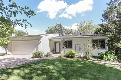 Lisle Single Family Home For Sale: 6581 Raintree Court