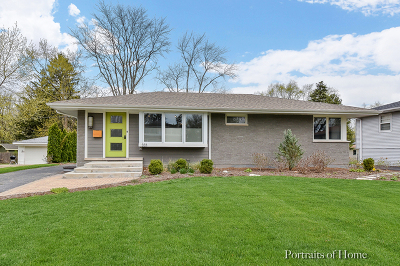 Naperville Single Family Home For Sale: 333 Elmwood Drive