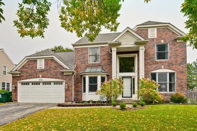Grayslake Single Family Home For Sale: 1200 Williamsburg Circle