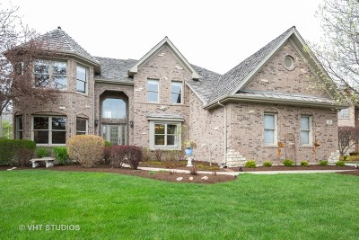 South Elgin Single Family Home For Sale: 4 Persimmon Lane