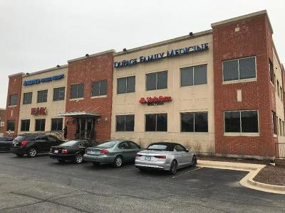 Naperville Commercial For Sale: 2272 West 95th Street