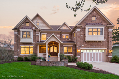 Naperville Single Family Home For Sale: 718 South Loomis Street