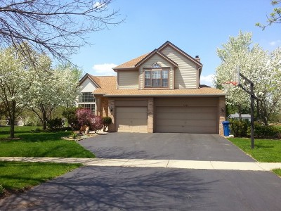 Bartlett Single Family Home For Sale: 1308 Silver Circle