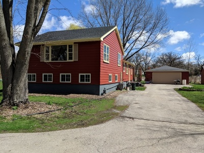 South Elgin Single Family Home For Sale: 225 South Drive