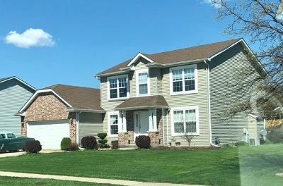 Bourbonnais Single Family Home For Sale: 544 Beach Avenue
