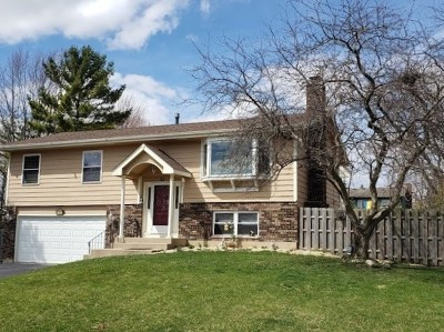 Algonquin Single Family Home For Sale: 632 South Vista Drive