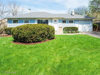 Downers Grove Single Family Home For Sale: 1744 Virginia Street