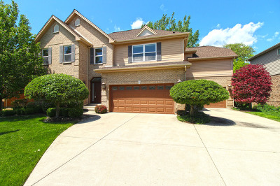 Vernon Hills Single Family Home For Sale: 2160 Beaver Creek Drive