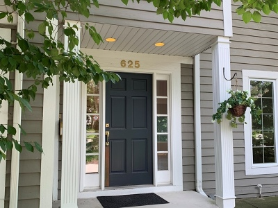 Hinsdale Single Family Home For Sale: 625 North Washington Street