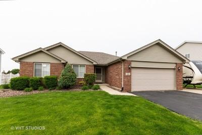 Romeoville Single Family Home New: 638 Superior Drive