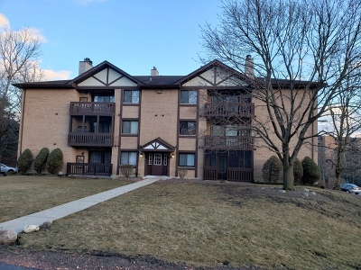 Tinley Park Condo/Townhouse For Sale: 6015 Lakeside Place #103A