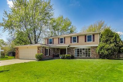 Libertyville Single Family Home For Sale: 408 Sandy Lane