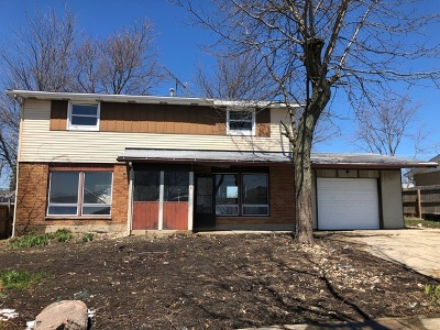 Mokena Single Family Home For Sale: 9416 Magnolia Avenue