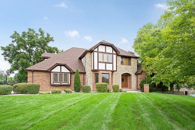 Lemont Single Family Home For Sale: 13110 Da Vinci Street