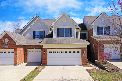 Hawthorn Woods Condo/Townhouse For Sale: 28 Red Tail Drive